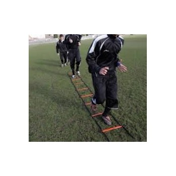 PT 8 Metre Speed Ladder (4 x 2 Metres)